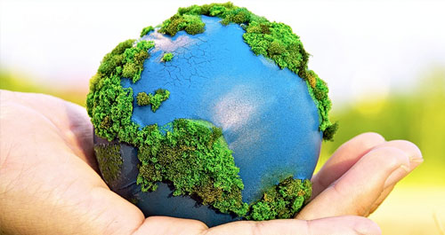 clases de inglés por Skype para proteger el medio ambiente