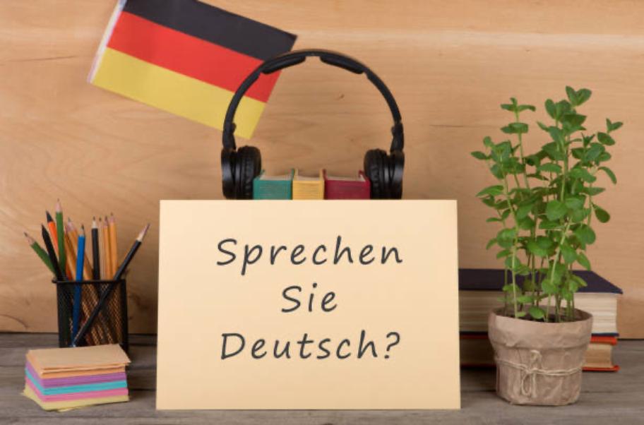 professeur natif germanophone