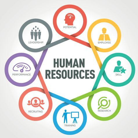 English Vocabulary needed for Human Resources