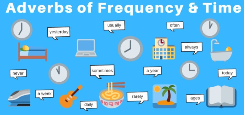 Frequency and time adverbs